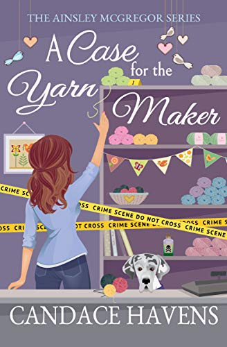 A Case for the Yarn Maker